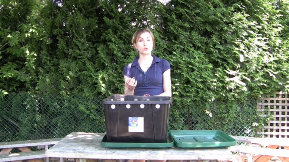 worm composting vancouver